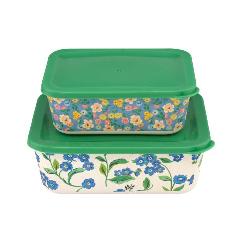 Forget Me Not Set Of 2 Rectangular Lunch Boxes